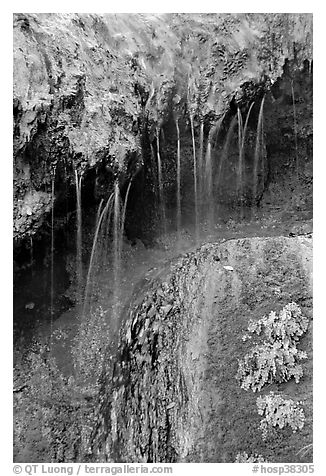 Hot springs water flowing over tufa terrace. Hot Springs National Park (black and white)