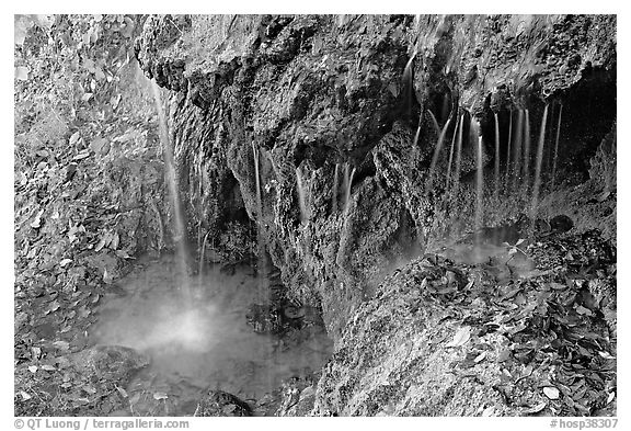 Hot water from springs flowing over tufa rock. Hot Springs National Park (black and white)