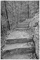 Stone steps on trail in forest with fall foliage, Gulpha Gorge. Hot Springs National Park, Arkansas, USA. (black and white)