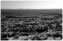 View from Mount Franklin. Isle Royale National Park ( black and white)