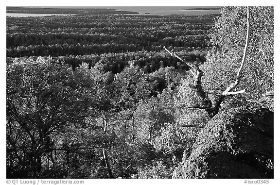 View over forests from Mount Franklin. Isle Royale National Park (black and white)