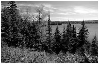 Lake Richie. Isle Royale National Park, Michigan, USA. (black and white)