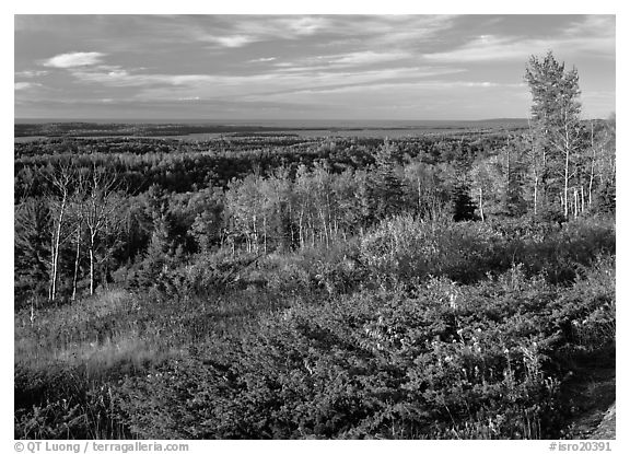 View from Greenstone ridge, looking towards Siskiwit lake. Isle Royale National Park (black and white)
