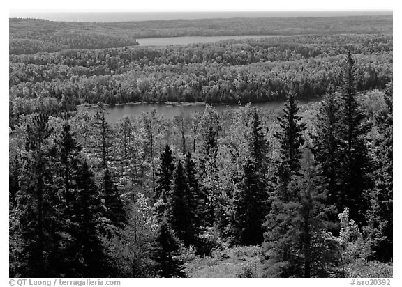 Lakes and forest. Isle Royale National Park (black and white)