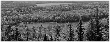 Lakes and forest in autumn. Isle Royale National Park (Panoramic black and white)