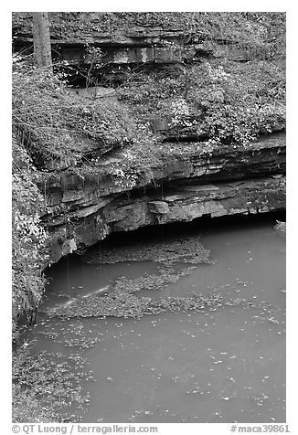 Styx river spring resurgence. Mammoth Cave National Park (black and white)