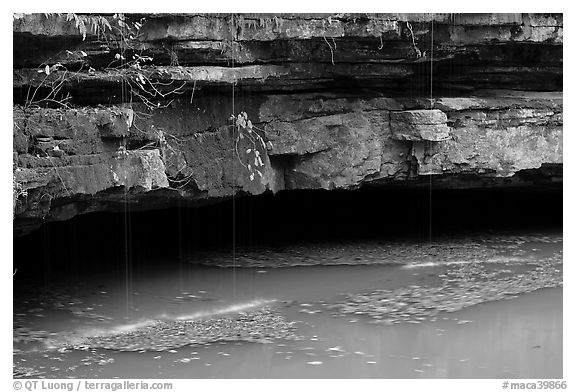 Styx resurgence and limestone ledges. Mammoth Cave National Park (black and white)