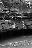 Water drips over limestone ledges and Styx. Mammoth Cave National Park, Kentucky, USA. (black and white)