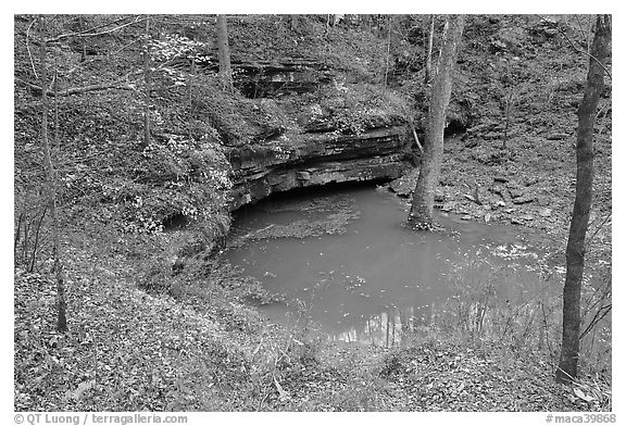 Styx river resurgence in autumn. Mammoth Cave National Park (black and white)