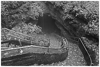 Steps and handrails leading down to cave. Mammoth Cave National Park ( black and white)