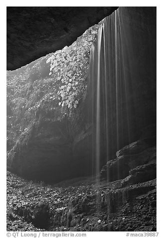 Ephemeral waterfall seen from inside cave. Mammoth Cave National Park (black and white)