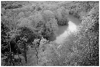 Green River seen from bluff in springtime. Mammoth Cave National Park ( black and white)