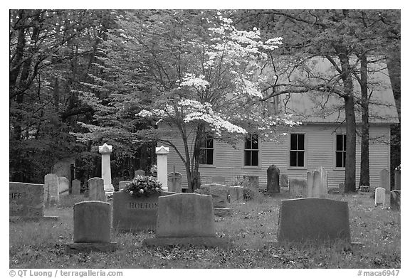 Cemetery Black And White