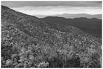 Hillsides in autumn. Shenandoah National Park, Virginia, USA. (black and white)