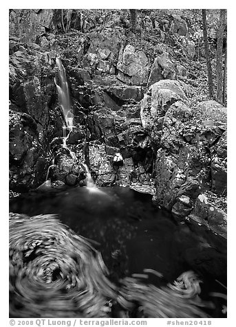 Cascade and circle of fallen leaves in motion. Shenandoah National Park (black and white)