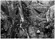 Stream cascading over dark rock in autumn. Shenandoah National Park, Virginia, USA. (black and white)