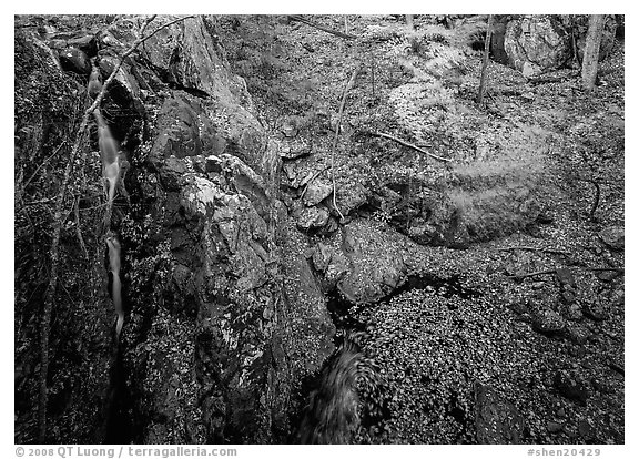 Waterfall and cliff from above. Shenandoah National Park (black and white)