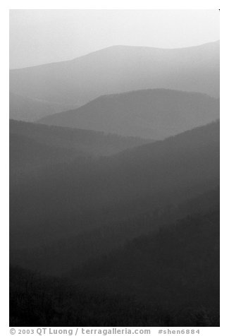 Receding ridges seen from Little Stony Man, sunrise. Shenandoah National Park (black and white)