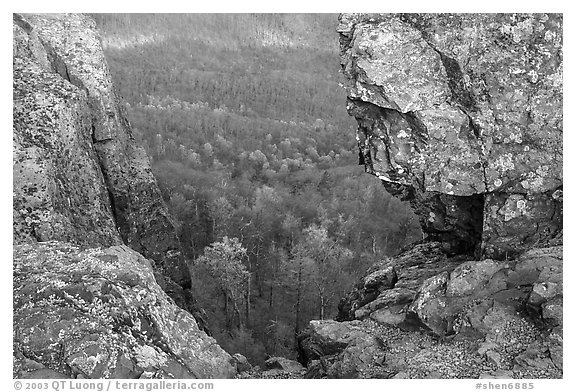 Forested slopes seen through a rock window, Little Stony Man. Shenandoah National Park (black and white)