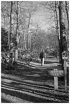 Backpacker on the Appalachian Trail. Shenandoah National Park, Virginia, USA. (black and white)