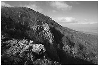 Rocky outcrop, Little Stony Man, early morning. Shenandoah National Park, Virginia, USA. (black and white)