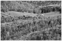 Barn in a meadow. Shenandoah National Park, Virginia, USA. (black and white)