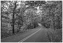 Skyline Drive in autumn. Shenandoah National Park, Virginia, USA. (black and white)