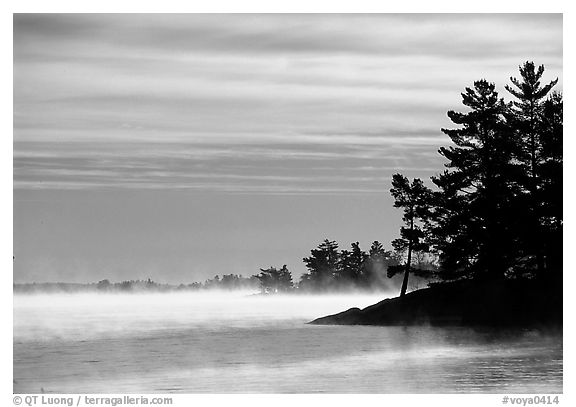Fog lifting up in early morning and trees on shore of Kabetogama lake. Voyageurs National Park (black and white)