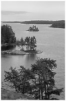 Islets and conifers, Anderson bay. Voyageurs National Park, Minnesota, USA. (black and white)