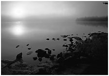 Sunrise and morning fog, Kabetogama lake near Woodenfrog. Voyageurs National Park, Minnesota, USA. (black and white)