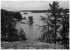 Islet and trees, Anderson Bay. Voyageurs National Park, Minnesota, USA. (black and white)