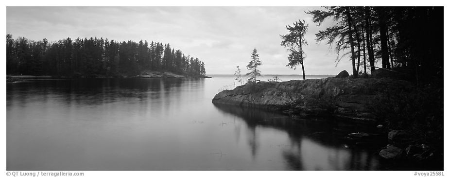 Forested cove. Voyageurs National Park (black and white)