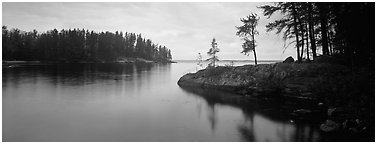 Forested cove. Voyageurs National Park (Panoramic black and white)