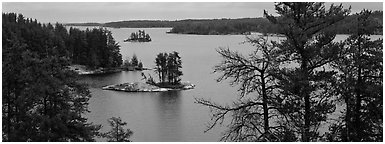 North woods lake scenery with tiny islets. Voyageurs National Park (Panoramic black and white)