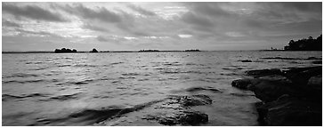 Lakeshore scenery. Voyageurs National Park (Panoramic black and white)