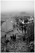 Campers in fog, San Miguel Island. Channel Islands National Park, California, USA. (black and white)