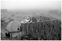 Campsite in typical fog, San Miguel Island. Channel Islands National Park, California, USA. (black and white)