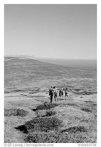 Hiking across  island to Point Bennett, San Miguel Island. Channel Islands National Park (black and white)
