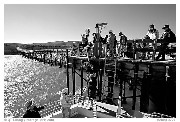 Approaching Bechers Bay pier, Santa Rosa Island. Channel Islands National Park (black and white)