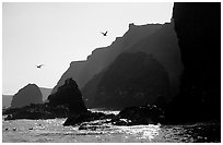 Steep cliffs, East Anacapa. Channel Islands National Park, California, USA. (black and white)