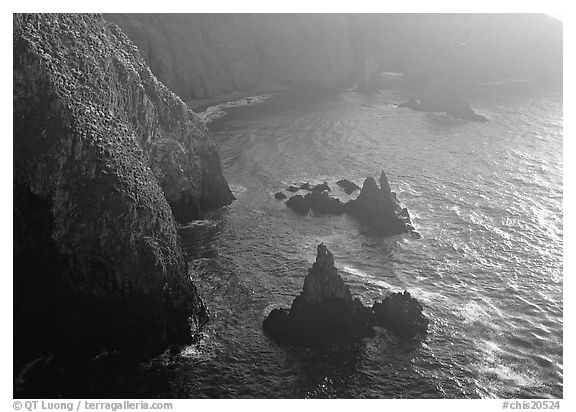 Cliffs and pointed rocks, Cathedral Cove, late afternoon, Anacapa Island. Channel Islands National Park (black and white)