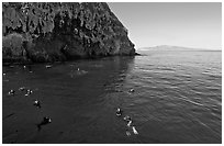 Divers, emerald waters, and steep cliffs, Annacapa island. Channel Islands National Park, California, USA. (black and white)