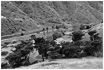Scorpion Ranch in Scorpion Canyon, Santa Cruz Island. Channel Islands National Park, California, USA. (black and white)