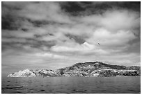 South side, Santa Cruz Island. Channel Islands National Park ( black and white)