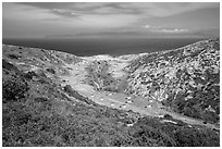 Campground wind shelters, Santa Rosa Island. Channel Islands National Park ( black and white)