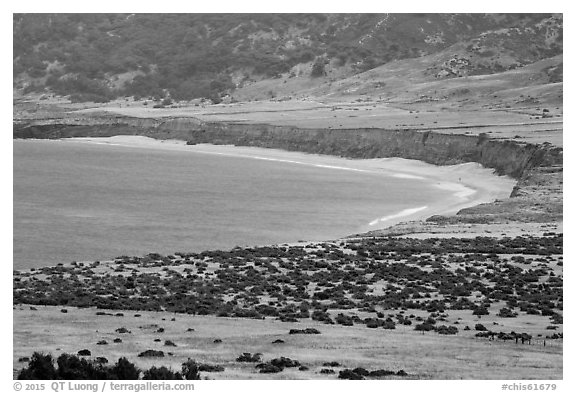 Bechers Bay, Santa Rosa Island. Channel Islands National Park (black and white)