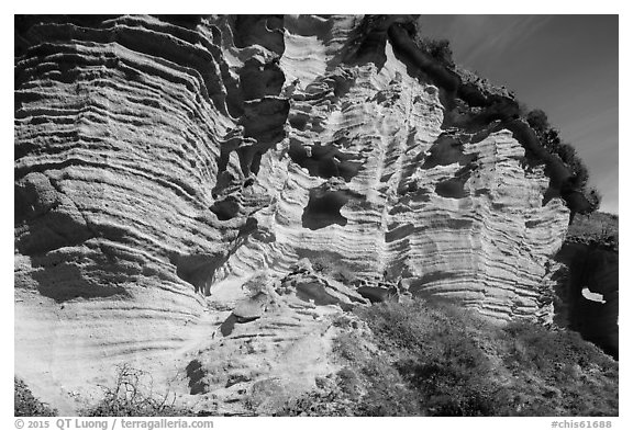 Sculptured cliffs, Lobo Canyon, Santa Rosa Island. Channel Islands National Park (black and white)
