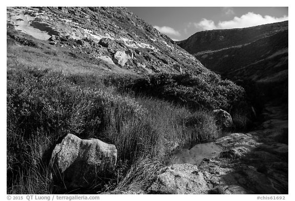 Year-round stream, Lobo Canyon, Santa Rosa Island. Channel Islands National Park (black and white)