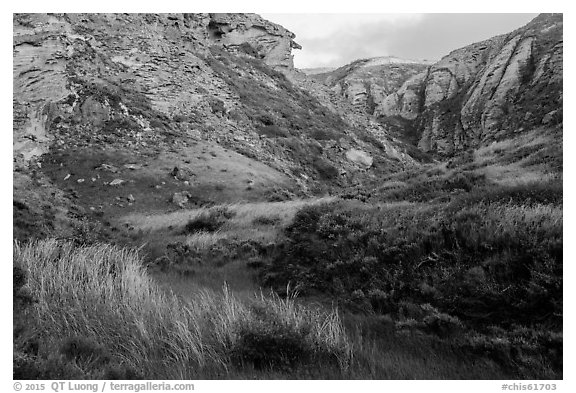 Lobo Canyon at sunset , Santa Rosa Island. Channel Islands National Park (black and white)