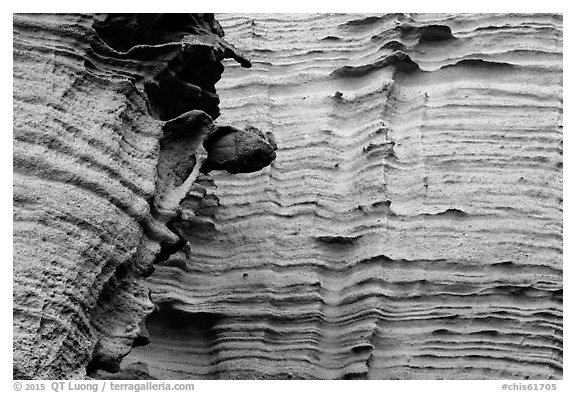 Detail of water-sculptured canyon wall, Lobo Canyon, Santa Rosa Island. Channel Islands National Park (black and white)